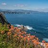 Cabo de Busto
