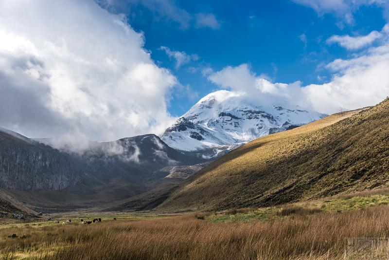 Der Chimborazo zeigt sich am Abend