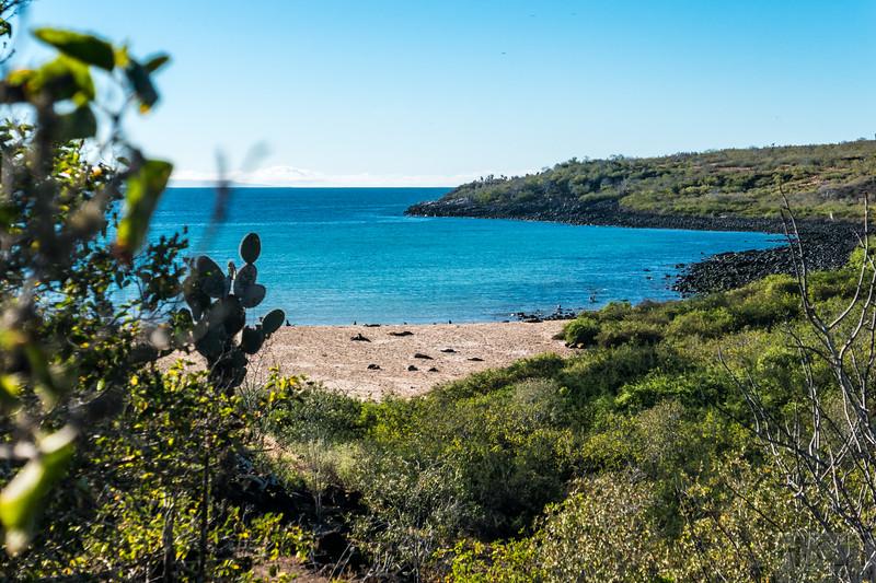 Barrington Bay