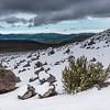 Ausflug zur Eduard Whymper Hütte auf 5042 m