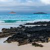Punta Cormorant