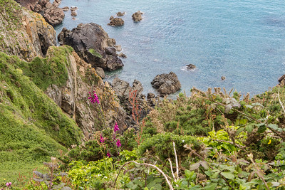 Hiking along the cost in Guernsey