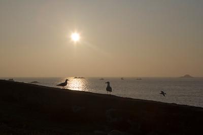 Guernsey, Coco Bay