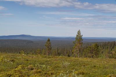 Pallas Nationalpark