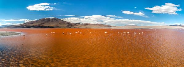 Bolivien - Laguna colorada
