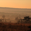 <center>The sun rises up in Entabeni (Waterberg)<br>Morning fog sees in the area</center>