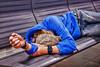 Onze vlucht van Chiclayo naar LIma werd vertraagd nadat een oudere passagier stierf tijdens de landing op de vlucht vanuit de hoofdstad. <br /> Niettegenstaande de wetsdokter, vorsers en de plaatselijke autoriteiten minder dan een uur na het landen reeds aanwezig waren moesten we wachten op het groen licht vanuit Lima om te mogen landen. Dit heeft maar eventjes vijf uur geduurd. <br /> Veel meer dan praten of lezen kun je niet doen in deze kleine regionale luchthaven, dan maar een dutje doen, jetlag oblige. <br /> <br /> Lucthaven van Chiclayo - Lambayeque - Peru
