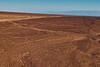 """Nazca lijn genaamd """"hand"""". Eén hand heeft vier vingers. Mensen of dieren die met minder vingers geboren zijn dan normaal worden beschouwd als dicht bij de """"apus"""" zijnde, de goden van de heuvels. <br /> Dit is louter één van de vele geogliefen over een gebied van 500 vierkante kilometers dat uit de tijd van de Nazca-cultuur (200 VC - 600 NC) stamt. <br /> Dankzij het gebrek aan wind en regen zijn deze figuren honderden jaren bewaard gebleven. <br /> Volgens sommige geleerden waaronder de Duitse Maria Reiche hebben deze lijnen een astronomische betekenis. <br />  <br /> Pampa de Nazca - Panamericana Sur - Ica - Peru<br /> Zondag 12 augustus '12"""