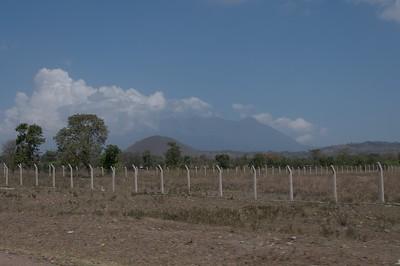 Fences around bought land, near Arusha