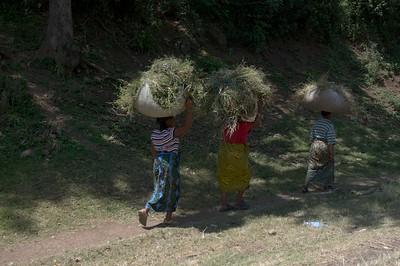 Street view, Arusha to Tarangire NP