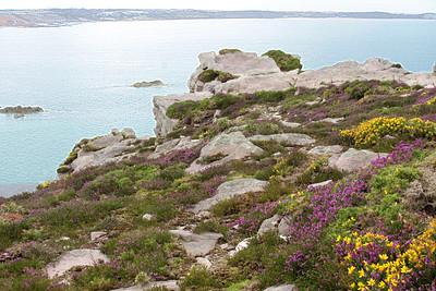 Cap d'Erguy 2008