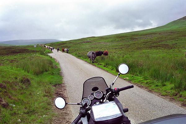 Schotland 2000