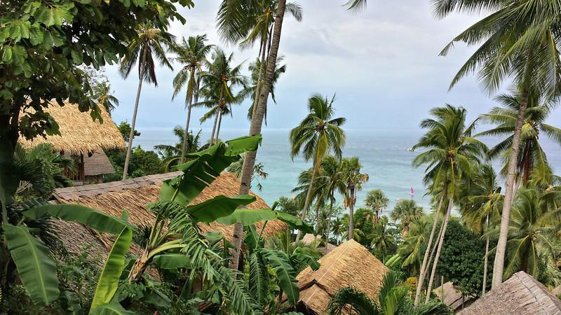 Udsigt fra vores terrasse i vores bambushytte (nr. 89)