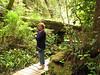 Tur i regnskoven.../rainforest