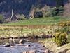 Klosterruinerne ved Glendalough