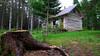 """Vores hytte """"The Spruce Cottage"""""""