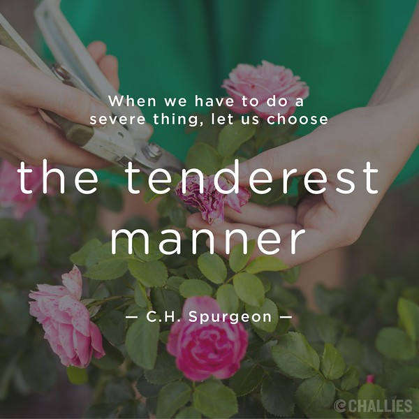 C.H. Spurgeon on Tenderness