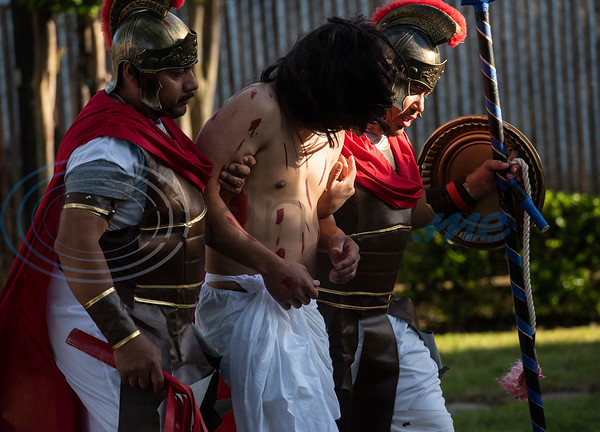 Roman soldiers take Jesus to the cross during a Stations of the Cross re-enactment held in Spanish on the lawn of St. Gregory Cathedral School presented by the Cathedral of the Immaculate Conception in Tyler on Good Friday, April 19, 2019. Emmanuel Ruiz of Tyler portrayed Jesus in the event. The stations tell the story of Pontius Pilate condemns Jesus to death, continuing with Jesus carrying his cross, seeing his mother, falling with his cross, being nailed to it, dying and being placed in the grave. On Sunday Christians will celebrate the resurrection of Jesus with Easter.   (Sarah A. Miller/Tyler Morning Telegraph)