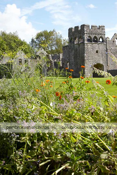 Bishop's Palace, Lamphey. From the herb garden.