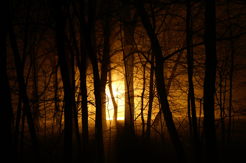 Foggy Night Beta
