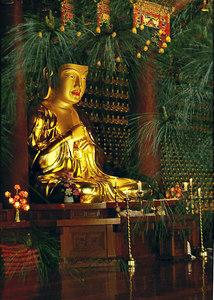 BuddhaBDay-9006+9010BuddhaPinespsd copy