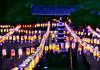 1976_BuddhasBday_Suwon Lanterns