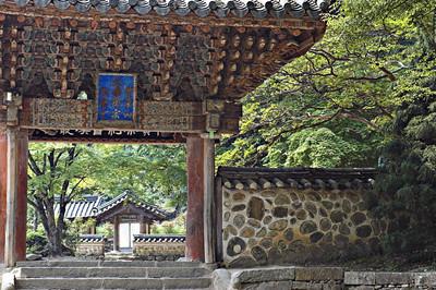 Songgwang5895-01