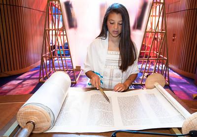 maya+reading_-3-2735426700-O