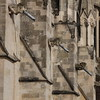 Chichester Cathedral<br /> 29 February 2016