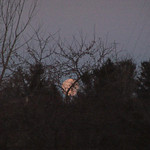 The moon was just setting at 6:30 am