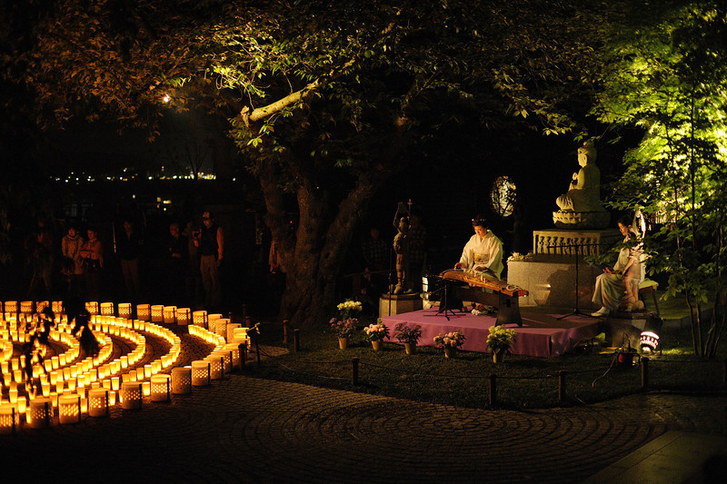 """Koto performance. The music was not """"religious"""" in the way sutra chanting would be, but it added a poignant ambiance."""