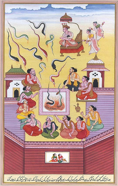The Snake Sacrifice of Janamejaya