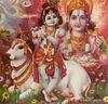 forms of krishna