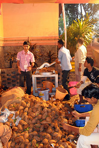 Maha Shivaratri (Mahashivratri) being celebrated at the Chinmaya Mission, Sandeepany, Powai on Monday, February 23rd, 2009. Coconut and other prasad being processed and offered at the temple.  Lord Jagadeeswara's temple is located within Chinmaya Mission's Sandeepany Sadhanalaya and situated on a hill top.
