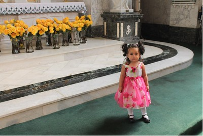 The Mass of the Golden Rose and reception at Saint Patrick Church in Norristown, Sunday August 23, 2015.