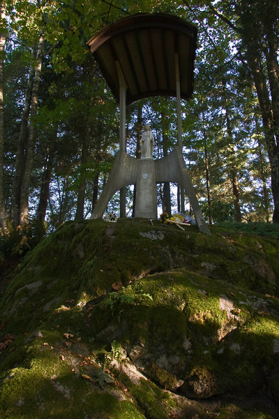 New Westminster, BC7 <br /> the statue of Mary in old-grove forest