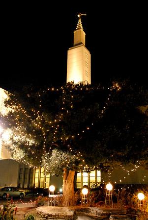 Los Angeles Temple Christmas Lights- January 2007