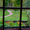 Looking toward the Sacred Grove from the window of the Smith Family cabin.