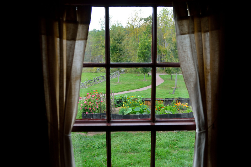 View of the Sacred Grove from the Smith Family Cabin.