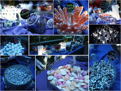 Chabot Space & Science Center Party
