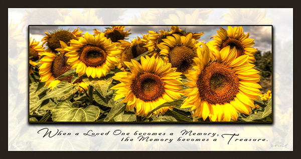 69054 Sunflowers I -Group 10x20 Web
