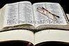 Bible Journal Psalm 30 reading glasses