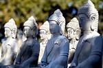 buddha in silent meditation mountain retreat