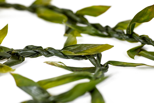 Hawaiian Ti Leaf Lei