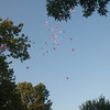 Into the sky - with lots of love for Casey....