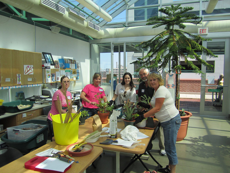 Volunteers help out in the greenhouse-Jackie Fedeli (L), Alice McGovern, Gabrielle Weiss, Sam Zolton & Barb Driscoll