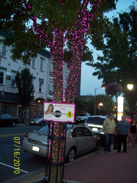 The pink remembrance tree at dusk.