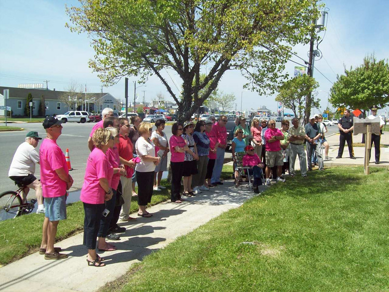 The crowd listens to the speakers while standing in front of the pink remembrance tree dedicated to Casey.