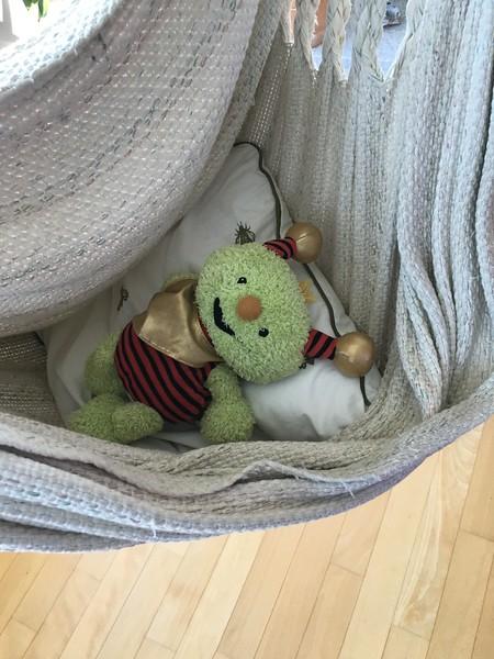 Relaxing in a hammock in Edingen near Heidelberg