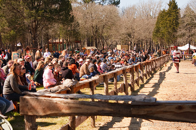 Crowd waiting for the joust.